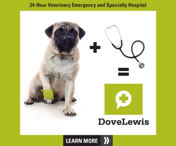 24-Hour Veterinary Emergency and Specialty Hospital